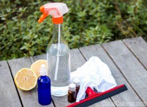 Los Mejores Aceites Esenciales para un Desinfectante Casero