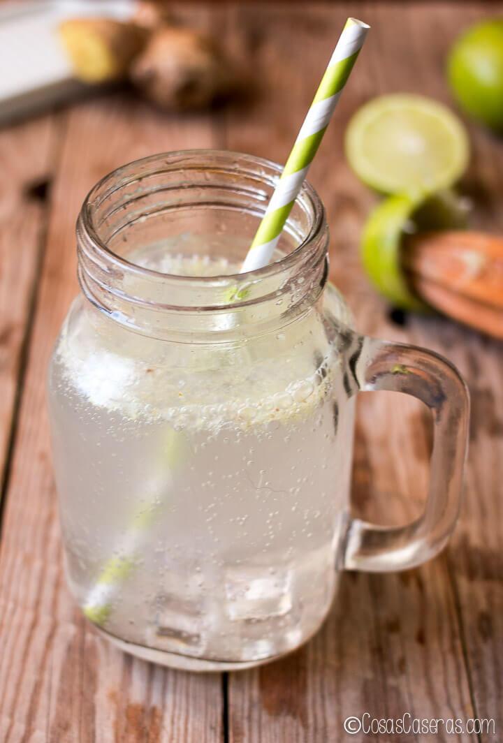 Sorprende tus sentidos con este ginger ale casero light y saludable. Es un refresco sin azúcar, pero lleno de sabor que te ayuda a saciar los antojos de algo menos saludable.