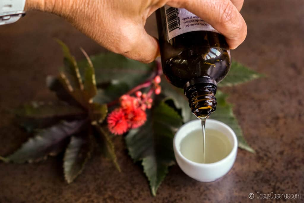 echando aceite de ricino de una botella a un bol pequeño. Detrás, se ve parte de la planta del ricino.