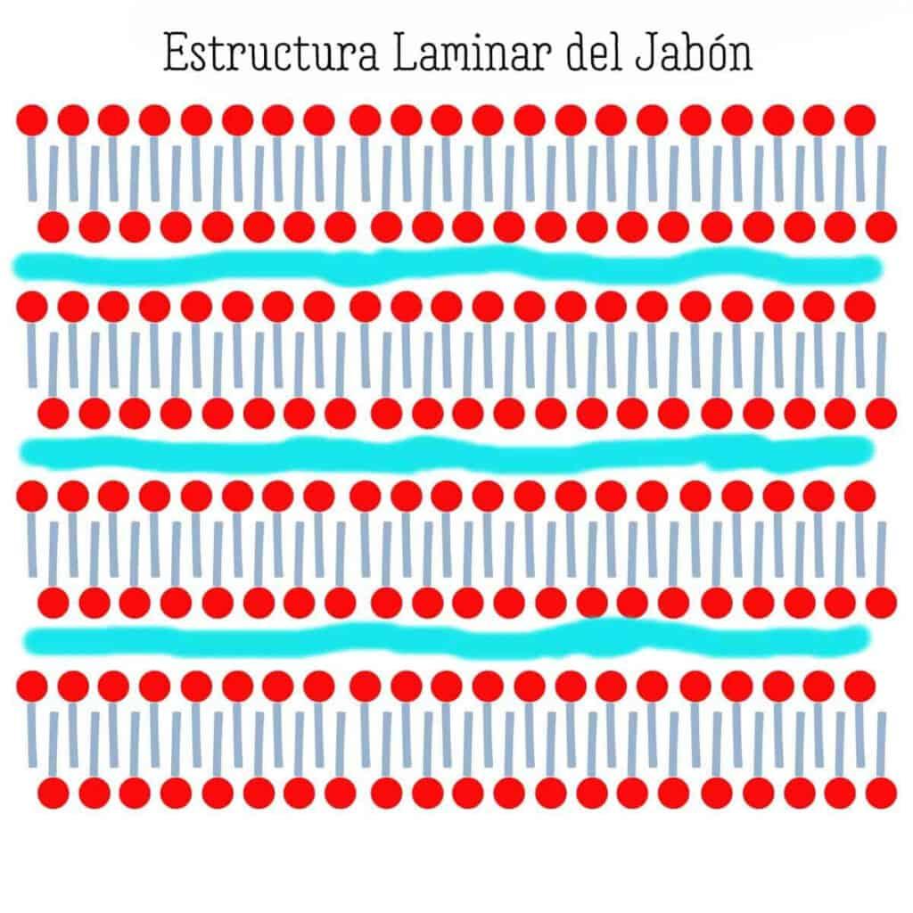 un gráfico mostrando como sería la estructura laminar del jabón cuando están bien alineados los tensioactivos