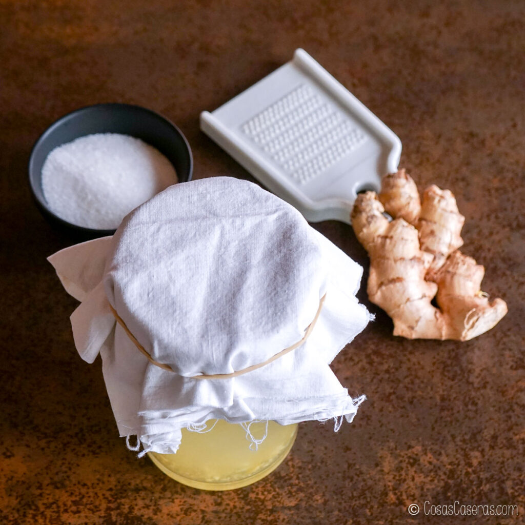 el recipiente cubierto con un paño, al lado de azúcar y un trozo de jengibre